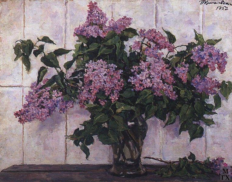 Картина цветущая сакура картина