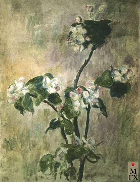 Лопатина В. В. Яблоневая ветка. 1927-28. Х.М. 49.5х40.