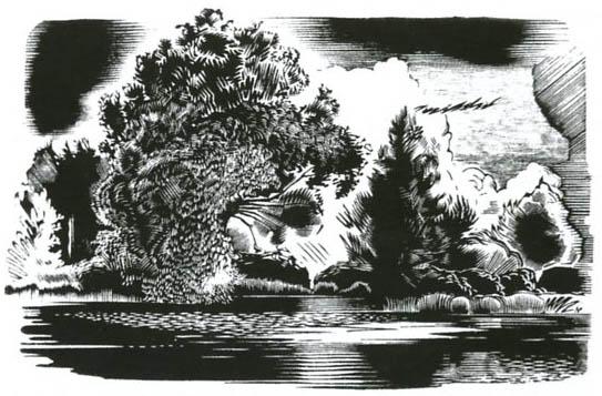 Падалицын Н. И. Деревья на берегу. 1925-26. Ксилография.9х15. ГМИИ.