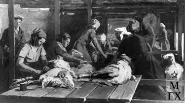 И.П.Рубинский. Стрижка овец